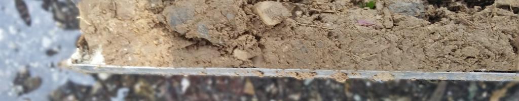 NWT: Boden – mehr als nur Erde – Bodenuntersuchungen
